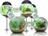 cool-fish-tank-design